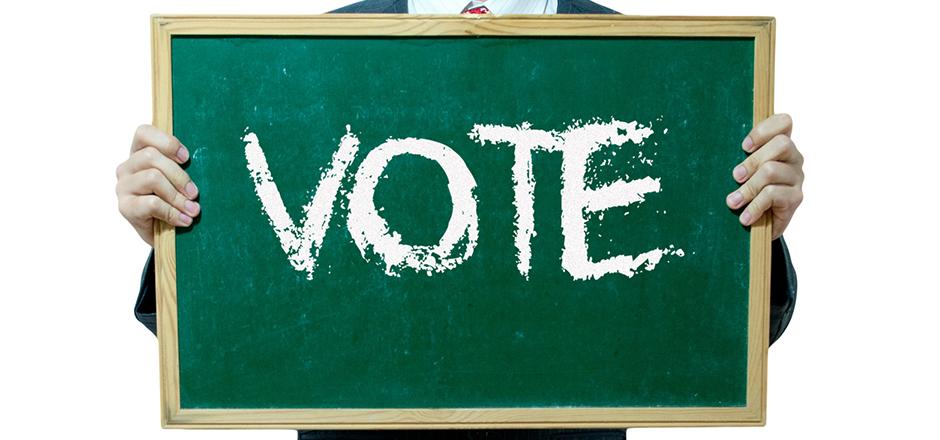 vote picture
